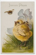 Joyeuses Paques - Chick With Beetle - Undivided Back - Easter