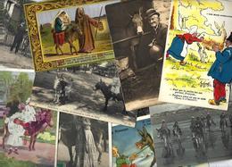 Lot N° 1551 De 10 CPA Ane Anes Donkey Déstockage Pour Revendeurs Ou Collectionneurs - Cartes Postales