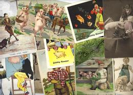 Lot N° 1552 De 10 CPA Cochon Pig Déstockage Pour Revendeurs Ou Collectionneurs - Cartes Postales