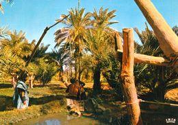 1 AK Mauretanien Mauritanie * Eine Oase In Mauretanien - IRIS Kare Nummer 5962 * - Mauretanien