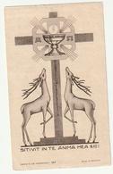Priesterwijding Mechelen 15 Oogst En Plechtige Eerste Mis Meerbeek 18 Oogst Gustaaf VREBOS Abbaye Maredret 157 - Images Religieuses