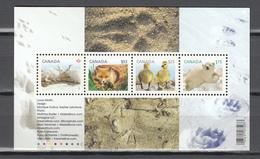 Canada 2011,4V In Block,rabbit,fox,ducks,polarbear,konijnen,vos,eenden,ijsbeer,MNH/Postfris(L3407) - Beren