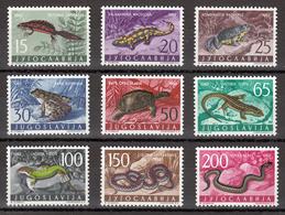 Yugoslavia 1962 Fauna, Reptiles $ Amphibians, Snakes, Turtles, Frogs, Lizard, Set MNH - 1945-1992 Socialist Federal Republic Of Yugoslavia