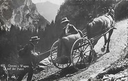 GEMMIPASS → Pferdegespann Mit Touristin Und Berggänger, Fotokarte Ca.1940  ►RRR◄ - VS Valais