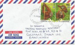 Singapore 2004. Cover Air Mail Letter,orangutan - Singapour (1959-...)