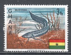 Ghana 1967. Scott #290 (U) African Lungfish * - Ghana (1957-...)