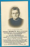 Bp    Mollekens   Dilbeek   Lier - Images Religieuses