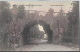 Laeken - Laken - Le Pont Rustique Dans Le Parc Public - HP1543 - Belgio