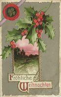 AK Weihnachten / Christmas Mistelzweig + Kleeblatt Geprägt / Embossed  Color 1910 #51 - Noël