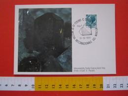 A.02 ITALIA ANNULLO - 1980 TORINO MOSTRA INTERNAZIONALE DEL MINERALE MINERAL CARD VESUVIANITE VAL D' ALA - Minerali