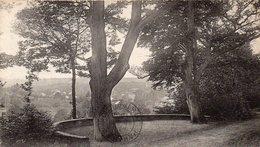 BAINS LES BAINS - Terrasse Des Deux Chênes - Bains Les Bains