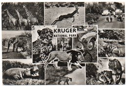 SOUTH AFRICA - KRUGER NATIONAL PARK-VOLKSWAGEN KAFER /BEETLE/ COCCINELLE /OLD CARS / RHODESIA AND NYASALAND STAMPS - Sud Africa