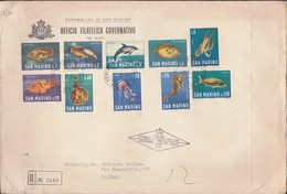 San Marino 1966  - FAUNA MARINA - PESCI - FISH - BUSTONE RACCOMANDATO FDC. - FDC