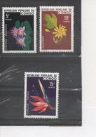CONGO - Flore - Fleurs : Lotus Bleu (Nymphaea Micrantha), Héliotrope, Oiseaux De Paradis (Strelitzia Reginae) - - Congo - Brazzaville