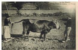 Cahors: Environs, Le Hersage, Gros Plan - Cahors