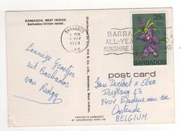 """Beau Timbre , Stamp """" Orchidée """" Sur Cp , Carte , Postcard Du 4 Mai 1979 - Barbades (1966-...)"""