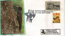 USA. Black-backed Woodpecker (Kern Valley Californie), Lettre De Californie Adressée En Floride - Climbing Birds