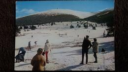 CPSM SPORT D HIVER SKI SKIEURS AU MONT SEREIN BELLES IMAGES DE PROVENCE ED G A L - Winter Sports