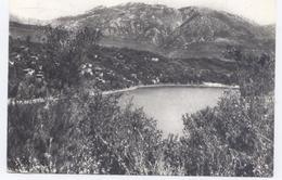 TIVAT Ostrvo Sveti Marko-1969 - Bon état - Montenegro