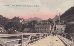 CELJE-SLOVENIA OLD POSTCARD (669) - Slovenia