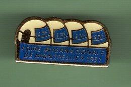 EDF *** FOIRE INTERNATIONALE DE MONTPELLIER 1991 *** EDF-02 - EDF GDF