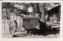 Photo  D'un Fournisseur Avec Sa Charette - Cartes Postales