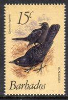 BARBADOS - 1982 15c BLACKBIRD DEFINITIVE WMK W14 S/W MNH ** SG 627a - Barbades (1966-...)