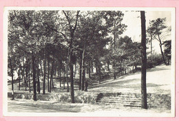 Kasterlee - De Bergen (Geelsebaan) - 1965 - Kasterlee