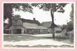 Kasterlee - Oude Hoeve Terlo - 1955 - Kasterlee