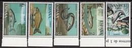 Spagna 1977 Sc. 2031/2035 Pesci Fish Poisson Espana Spain Full Set MNH Salmone Carpa Anguilla... - Pesci
