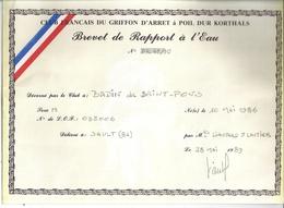BREVET DE RAPPORT A L'EAU-CLUB FRANCAIS  DU GRIFFON D'ARRET à POIL DUR KORTHALS N°D221/10-SAULT 84-1989 - Diplômes & Bulletins Scolaires