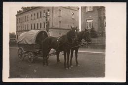 C0209 - Pferdekutsche Kutsche Pferdegespann Gespann - Fotografie