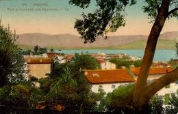 CORSE  - AJACCIO - Vue à Travers Les Oliviers - En Couleurs - Ajaccio