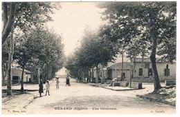 BERARD - VUE GENERALE- HOTEL DU SAHEL-ANIMEE -  ENVIRONS DE CASTIGLIONE - ALGERIE- - Other Cities