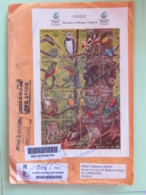Nicaragua 2018 Cover To Russia - Returned Bad Adress - Full Sheet Animals - Birds Butterflies Monkey Parrot Wild Cat - Nicaragua