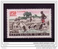 Mali, Boeuf, Bull, Berger, Shepard, Agriculture, élevage, Shepherd - Ferme