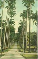 L 370 - Barbade- Entrance To Codrington College, St John - Cartes Postales