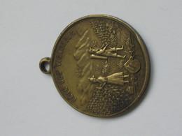 Jolie Médaille FETE DES VIGNERONS  -- VEVEY LES 5-9 Aout 1889   **** EN ACHAT IMMEDIAT **** - Professionals / Firms