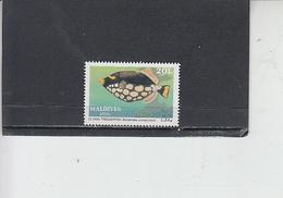 MALDIVE -  Fauna - Pesci - Pesci