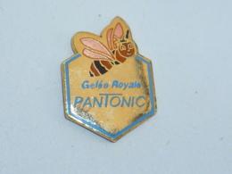 Pin's GELEE ROYALE PANTONIC  01 - Animals
