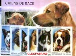BENIN 2000 DOG RETRIEVER HUSKY SHAR-PAI TERRIER CARLIN ST-BERNARD MALAMUTE CHIEN 2261-3 - Dogs