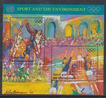 Nations Unies New-York BF N° 13 XX  Sports Et Environnement , Le Bloc Sans Charnière, TB - Ungebraucht