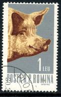 Roumanie 1962  Y&T 1892 ° Cochon-porc - 1948-.... Républiques