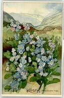52733601 - Werbung Kohler Schokolade Sumpf-Vergissmeinnicht - Werbepostkarten