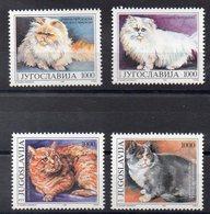 YOUGOSLAVIE   Timbres Neufs ** De 1992  ( Ref 5860 ) Animaux - Chats - 1992-2003 République Fédérale De Yougoslavie