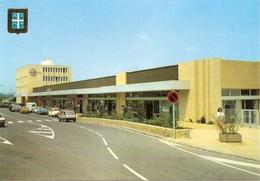 51. CPM. Marne. Chalons-sur-Marne. La Gare (animée, Autos, R5, 2 CV, Estafette Renault, Etc.) - Châlons-sur-Marne