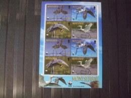 WWF Nice Sheet Montserat Birds  Mnh - W.W.F.