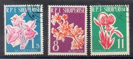 ALBANIE  Timbres  De 1961  ( Ref 5869 ) Plantes - Fleurs - Albanie