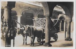 MERCATO A LUGANO → Motivo Ochsengespann Holztransport, Ca.1930 - TI Tessin