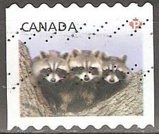 Canada - 2012 - Ratonneaux - YT 2663 Oblitéré - 1952-.... Règne D'Elizabeth II